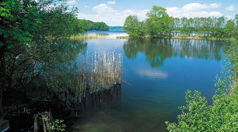 Schaalsee-Wandern-in-Westmecklenburg
