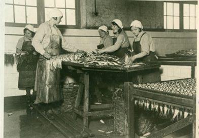 """Cuxhaven und der Fisch: Sonderausstellung im Museum """"Windstärke 10"""""""